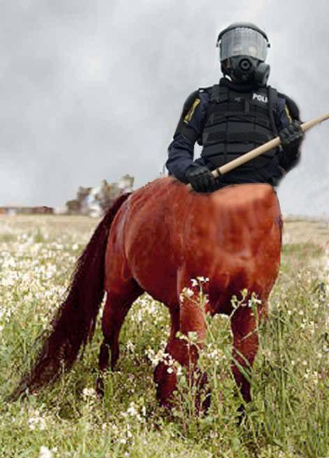 Centaur may swenson essay